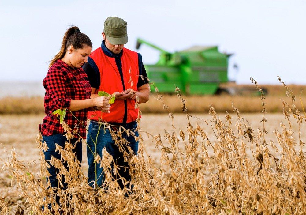 100+ Catchy & Unique Agriculture Company Names Ideas